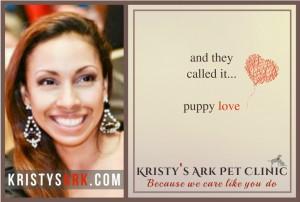 Puppy-Love-kav